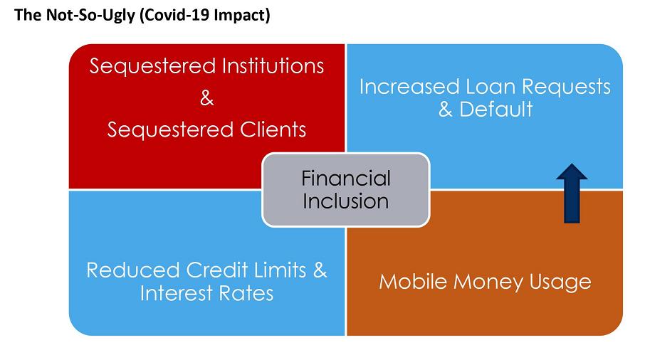 Covid 19 Financial Inclusion In Nigeria The Good And The Not So Ugly Financial Inclusion Nigeria